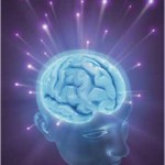 human-brain-2